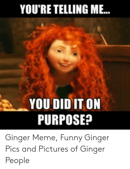 Ginger Pics: YOU'RE TELLING M..  YOU DID IT ON  PURPOSE? Ginger Meme, Funny Ginger Pics and Pictures of Ginger People