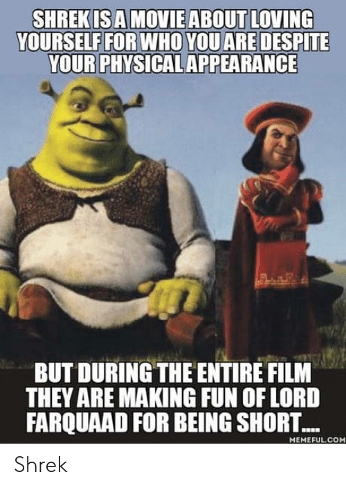 farquaad: YOURSELF FOR WHO YOU ARE DESPITE  YOUR PHYSICAL APPEARANCE  BUT DURING THE ENTIRE FILM  THEY ARE MAKING FUN OF LORD  FARQUAAD FOR BEING SHORT...  MEMEFUL CO Shrek