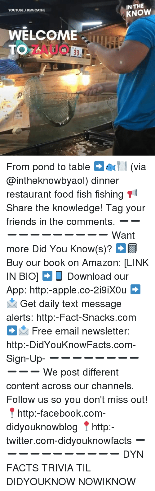 Amazon, Apple, and Facebook: YOUTUBE/KIM CATHE  IN THE  KNOW  WELCOME  TO From pond to table ➡️🐟🍽 (via @intheknowbyaol) dinner restaurant food fish fishing 📢 Share the knowledge! Tag your friends in the comments. ➖➖➖➖➖➖➖➖➖➖➖ Want more Did You Know(s)? ➡📓 Buy our book on Amazon: [LINK IN BIO] ➡📱 Download our App: http:-apple.co-2i9iX0u ➡📩 Get daily text message alerts: http:-Fact-Snacks.com ➡📩 Free email newsletter: http:-DidYouKnowFacts.com-Sign-Up- ➖➖➖➖➖➖➖➖➖➖➖ We post different content across our channels. Follow us so you don't miss out! 📍http:-facebook.com-didyouknowblog 📍http:-twitter.com-didyouknowfacts ➖➖➖➖➖➖➖➖➖➖➖ DYN FACTS TRIVIA TIL DIDYOUKNOW NOWIKNOW