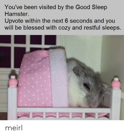 Been Visited: You've been visited by the Good Sleep  Hamster.  Upvote within the next 6 seconds and you  will be blessed with cozy and restful sleeps. meirl