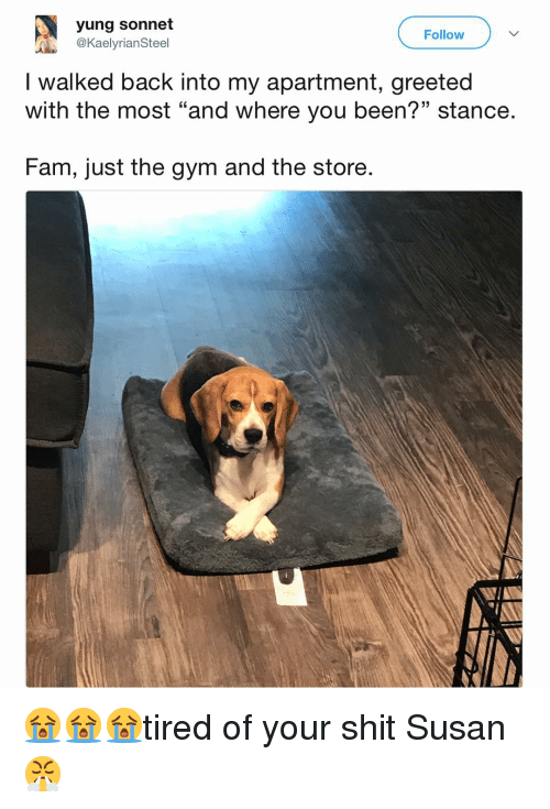"""Fam, Funny, and Gym: yung sonnet  @KaelyrianSteel  Follow  I walked back into my apartment, greeted  with the most """"and where you been?"""" stance.  13  Fam, just the gym and the store. 😭😭😭tired of your shit Susan😤"""