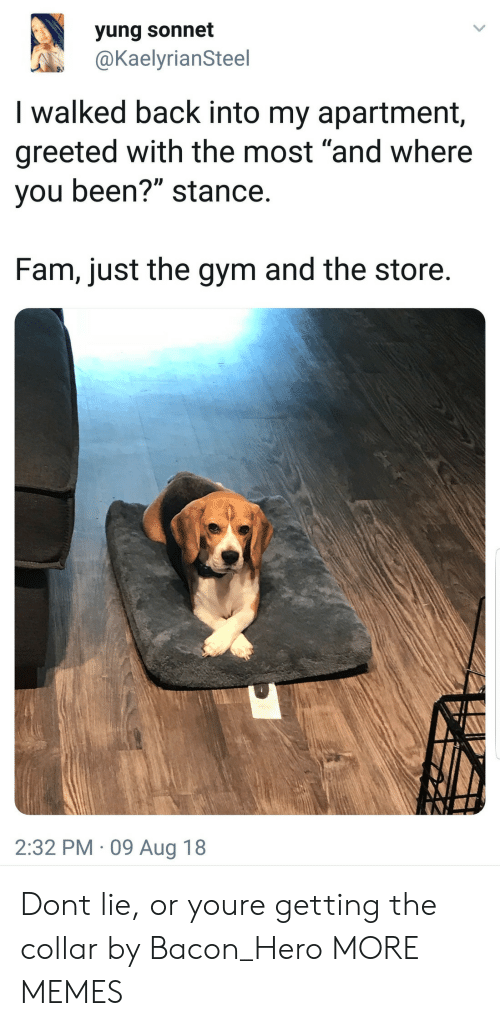 "Dank, Fam, and Gym: yung sonnet  @KaelyrianSteel  I walked back into my apartment,  greeted with the most ""and where  you been?"" stance  Fam, just the gym and the store  2:32 PM 09 Aug 18 Dont lie, or youre getting the collar by Bacon_Hero MORE MEMES"