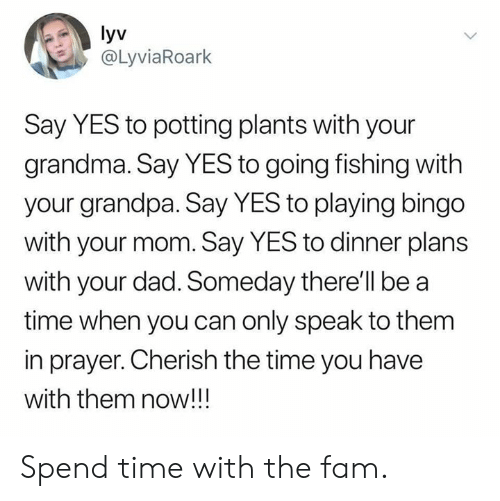 bingo: yv  @LyviaRoark  Say YES to potting plants with your  grandma. Say YES to going fishing with  your grandpa. Say YES to playing bingo  with your mom. Say YES to dinner plans  with your dad. Someday there'll be a  time when you can only speak to them  in prayer. Cherish the time you have  with them now!!! Spend time with the fam.