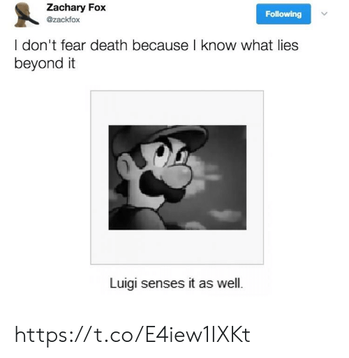 Death, Fear, and Fox: Zachary Fox  Following  @zackfox  I don't fear death because l know what lies  beyond it  Luigi senses it as well. https://t.co/E4iew1IXKt