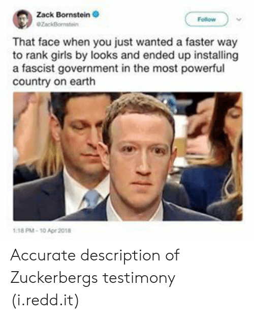 A Fascist: Zack Bornstein  ZackBo  That face when you just wanted a faster way  to rank girls by looks and ended up installing  a fascist government in the most powerful  country on earth  18 PM-10 Ape 2018 Accurate description of Zuckerbergs testimony (i.redd.it)