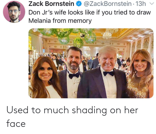 Melania: @ZackBornstein - 13h  Zack Bornstein O  v  Don Jr's wife looks like if you tried to draw  Melania from memory Used to much shading on her face