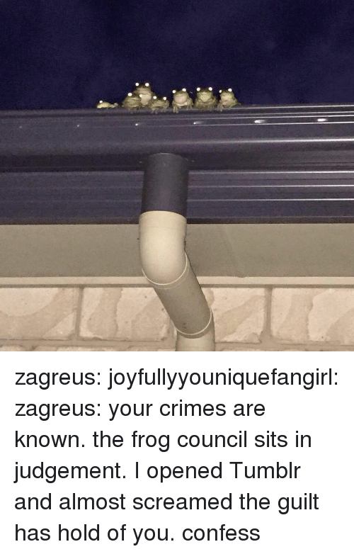 Tumblr, Blog, and Com: zagreus:  joyfullyyouniquefangirl:  zagreus:    your crimes are known. the frog council sits in judgement. I opened Tumblr and almost screamed  the guilt has hold of you. confess