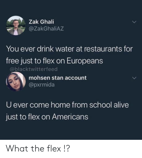 Stan: Zak Ghali  @ZakGhaliAZ  You ever drink water at restaurants for  free just to flex on Europeans  @blacktwitterfeed  mohsen stan account  @pxrmida  U ever come home from school alive  just to flex on Americans What the flex !?
