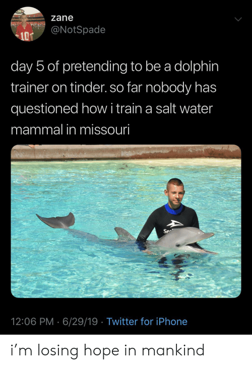 Dolphin: zane  @NotSpade  10T  day 5 of pretending to be a dolphin  trainer on tinder. so far nobody has  questioned howi train a salt water  mammal in missouri  Se  12:06 PM 6/29/19 Twitter for iPhone i'm losing hope in mankind