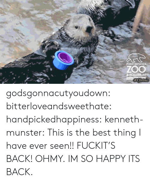 im so happy: ZOO godsgonnacutyoudown:  bitterloveandsweethate:  handpickedhappiness:  kenneth-munster:  This is the best thing I have ever seen!!  FUCKIT'S BACK!  OHMY.  IM SO HAPPY ITS BACK.