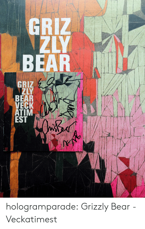 Tumblr, Bear, and Blog: ZYR  AC IN T hologramparade:  Grizzly Bear - Veckatimest